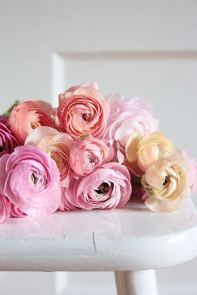 flowers-blog